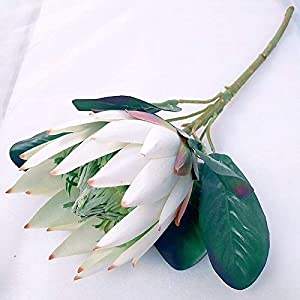 Artificial and Dried Flower Artificial Flower Africa Protea Cynaroides Silk King Flowers Fake Flores for Home Decoration Wreath Plants Flora – ( Color: White 02 )