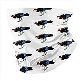 Cepillo de pavo (Alectura Lathami) en blanco Variedad Bufanda Mascarilla Calentador de cuello Pañuelo para la cabeza al aire libre Bufanda Polaina para el cuello Bandanas para hombres y mujeres