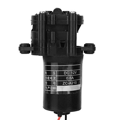 Bomba de agua resistente a la corrosión Bomba de plástico Herramienta de alta temperatura para el hogar 12/24 V para tanques de peces para el hogar para electrodomésticos(12V)