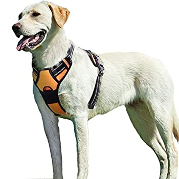 Eagloo Dog Harness No Pull Walking Pet Harness with 2 Metal Rings and Handle Adjustable Reflective Breathable Oxford Soft Vest Easy Control Front Clip Harness Outdoor for Large Dogs Orange