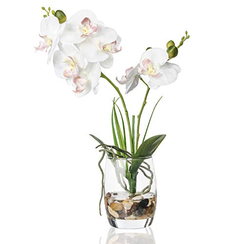 Jusdreen Artificial Flower Bonsai with Glass Vase Vivid Orchid Flowers...
