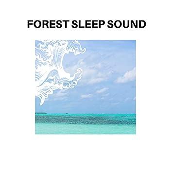 Forest Sleep Sound