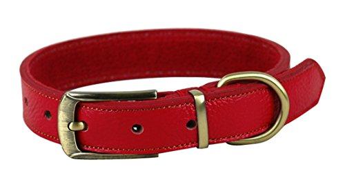Rantow gepolsterten Leder Classic Pet Hundehalsband, verstellbares Halsumfang 35cm bis 45cm und 2,5cm breit, Gurt-Art Einfach zu bedienen Kopf-Halsband für mittlere/kleine Hunde (Rot)