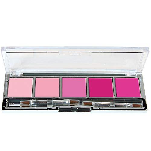 ParisAx Palette 5 Rouges à Lèvres Nuances Rose