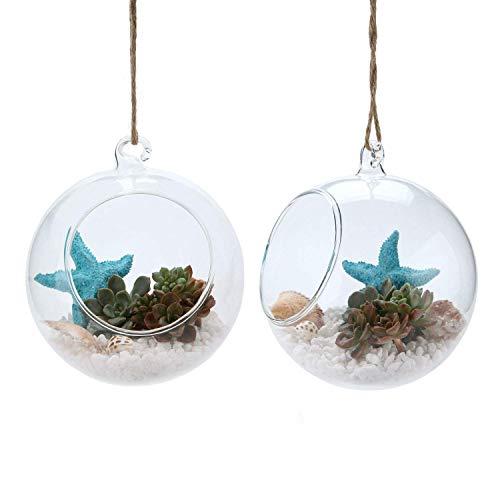T4U 15cm Glasvase zum Anfhängen 2er-Set, Hängende Glaskugeln Pflanzgefäße für Sukkulenten und Kakteen, Luftpflanzen Halter Teelichthalter…