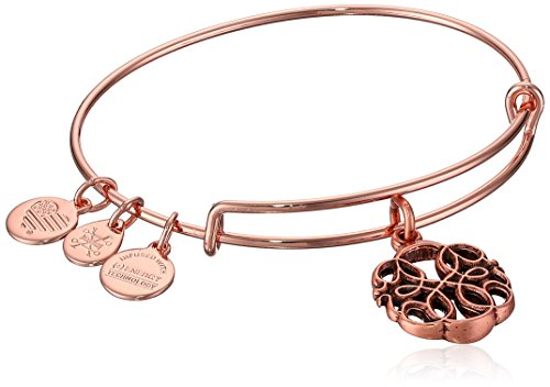 Alex and Ani Women's Path of Life Rose Gold Charm Bangle Bracelet, Expandable