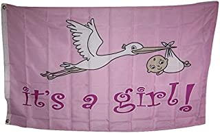 ALBATROS 3 ft x 5 ft Itins A Baby Girl Pink Stork Delivery Flag Banner Brass Grommets for Home and Parades, Official Party, All Weather Indoors Outdoors