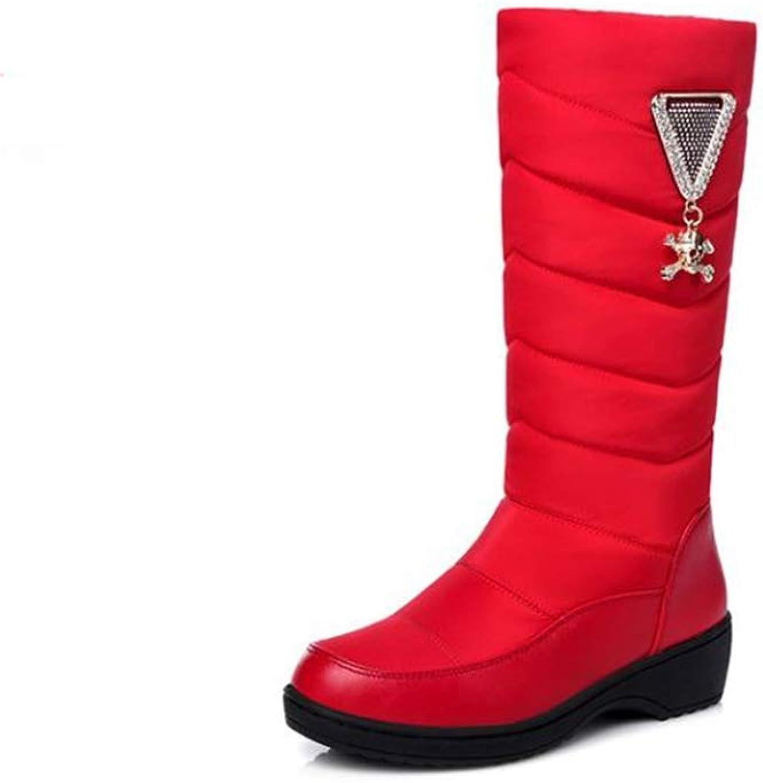 Believed Women Snow Boots Fashion Flat Heels Winter shoes Warm Fur Autumn Boots Women's shoes