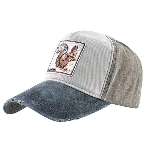 Unisex Baseballkappe, gestickt, mit Tiermotiv, quadratisch, Grau / Braun / Eichhörnchen