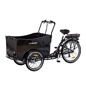 """E-Lastenrad """"E-Donkey"""", E-Lastenfahrrad, Kindertransport, Transport E-Bike, Elektro Fahrrad, Elektro-Lastenrad, Lastenfahrräder"""