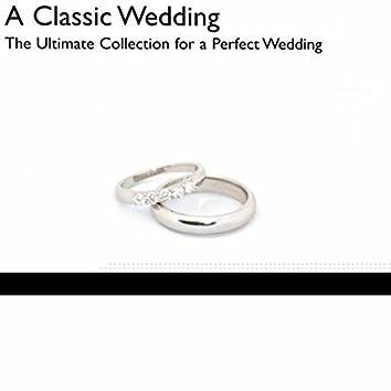 Radiance: A Classic Wedding