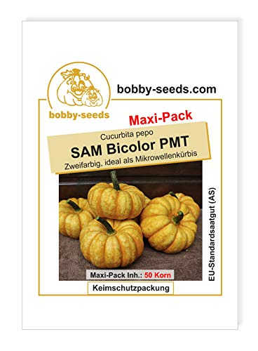 SAM Bicolor PMT Kürbissamen von Bobby-Seeds 50 Korn