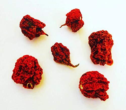 5 pièces + Fruits secs Chili dosettes Carolina Reaper