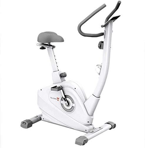 Wghz [Promoción 2021] Bicicleta estática Bicicleta de Spinning Bicicleta estática de Fitness Casa pequeña Bicicleta Ultra silenciosa Pérdida de Peso Steppers y Aptitud física