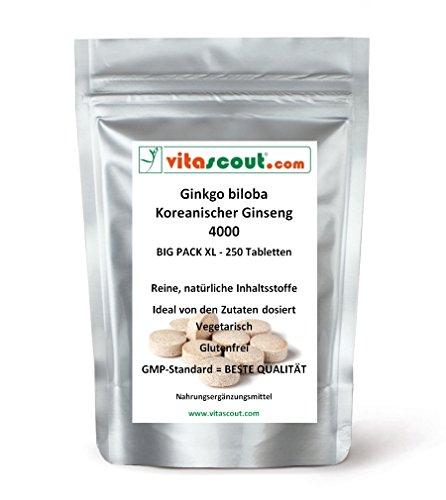 Ginkgo biloba EXTRAKT 3000 & Panax Koreanischer Ginseng EXTRAKT 1000 - 250 Vegetarische Tabletten