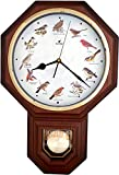 JUSTIME Unique 12 North America Bird's Song Schoolhouse Pendulum Wall Clock Chimes Every Hour Melody Made in Taiwan (TCBD-PP-OWL-DW Dark Wood)