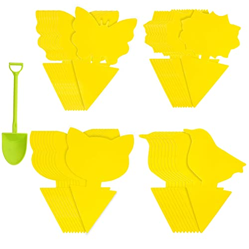 40 Pcs Sticky Trap, Fruit Fly and Gnat Trap Dual-Sided Fly Catcher Plastic...