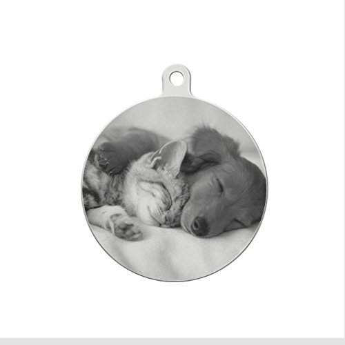 Moonlove Customized Photo & Text Pet ID Tag - Personalized Stainless Steel Dog Cat Anti-Lost Engraved Plate Name Tag Charms for Collar, Necklace, Keychain, Round,25mm