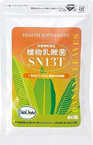 植物乳酸菌SN13T 60錠 2か月分 1粒あたり200億個の乳酸菌 広島大学院の研究成果 アルコール中毒症状改善