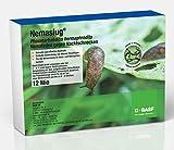 Nemaslug® BASF Nematoden 12 Mio. (40m²) gegen Nacktschnecken - wirksam ab 5°C