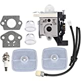 Hipa SRM 225 Carburetor for Echo SRM225 GT225 GT225i PE225 PAS225 SHC225 PPF225 SRM225i SRM225SB SRM225U GT225L GT225SF PPF235ES PPT235ES SHC225S Trimmer Weedeater Parts with Tune Up Kit Air Filter