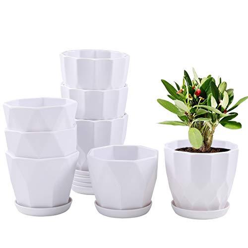 large planting pots - 7