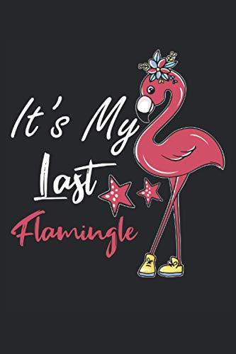 Cuaderno: Flamingo, Flamingos, Bird of Paradise, Pink Bird,: 120 páginas rayadas: cuaderno, cuaderno de bocetos, diario, lista de tareas pendientes, ... para planificar, organizar y tomar notas.