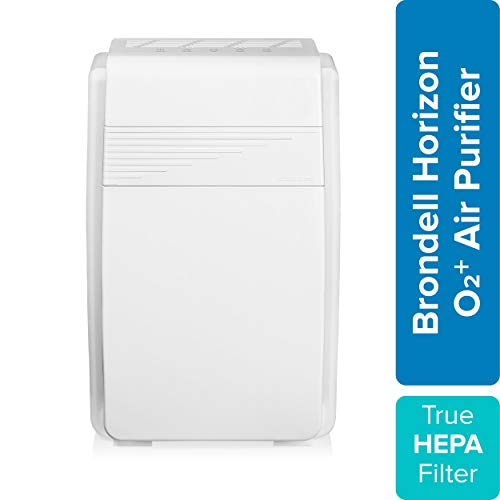 O2 Air Purifier Reviews