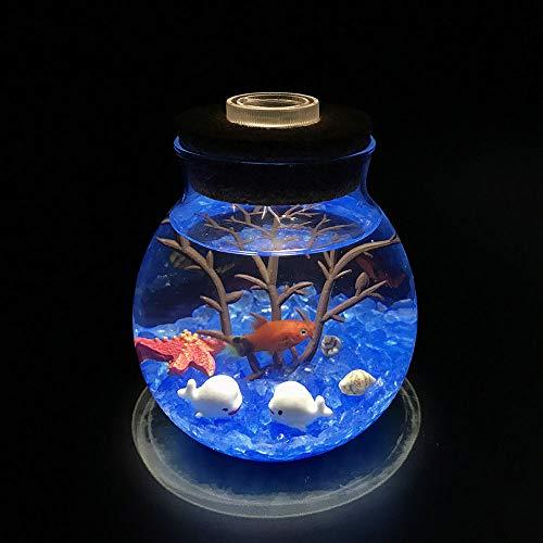 SZSCUTE Ecosphere, Ecosystem Aquarium Kit, Globe Glass Jar Mit Led-Aquarium Light Blue Glass Pebbles Fan Coral Branch Und Seashells Office Desk Decor Tisch Herzstück Einzigartige Geburtstagsgeschenke