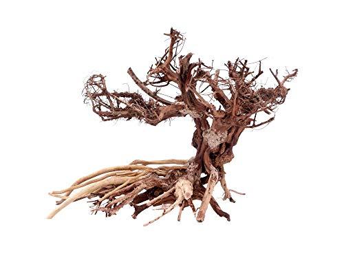 Aquarium Wurzel Bonsai Exclusiv Größe L 40x30cm Nr.4 Holz Deko Aquascaping Bonsaibaum Dekoration Landschaft Moos Echtholz Natur