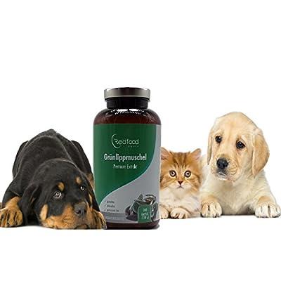 Für Ihren Liebling - Grünlippenmuschel Premium Extrakt · XXL Dose 300 Kapseln · 1500 mg Grünlippmuschelpulver