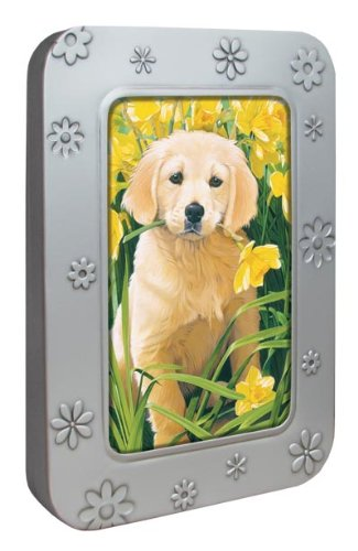 Tree-Free Greetings Noteables Notecards In Reusable Embossed Tin, 12 Card Assortment, Recycled, 4 x 6 Inches, Golden Puppy, Multi Color (76035)