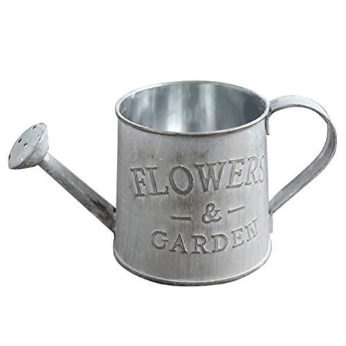 BESPORTBLE regadera retro hervidor de hierro, jarra, jarra, jardín, maceta, planta, decoración del hogar