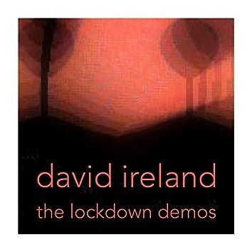 The Lockdown Demos