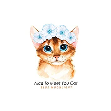 Nice To Meet You Cat