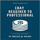 eBay beginner to professional (English Edition)