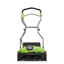 Greenworks Tools 2504807UF Detatcher, Green