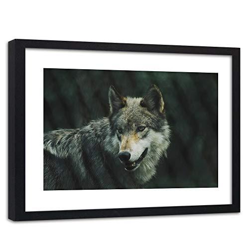 Photo encadrée noir Loup Giclée Art Animal Nature Foret gris 90x60 cm
