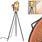 Lámpara de pie Eide, vintage, de metal, color negro, diámetro de 37 cm, casquillo E27, máx. 60 W, lámpara de suelo ajustable en diseño retro, con efecto de luz, también adecuada para bombillas LED