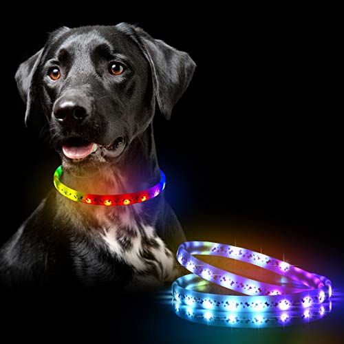 LED Dog Collar - Color Changeable Light Up Dog Collars, Waterproof with USB Rechargeable,10 Display Model Glow in The Dark, Fits for Small Medium Large Dog,Keep Your Pets Safety, Visibility and Seen