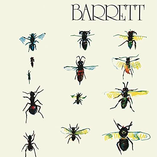 Barrett [Disco de Vinil]