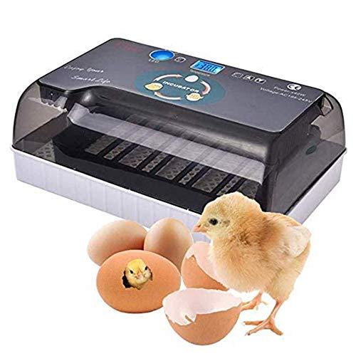 GRX-ZNLJT Inkubator, Brutkasten Für Hühner Vollautomatisch, Mit Effizienter Led Beleuchtung Feuchtigkeitsfest Energiesparend Kühltechnologie Bis 12 Eier