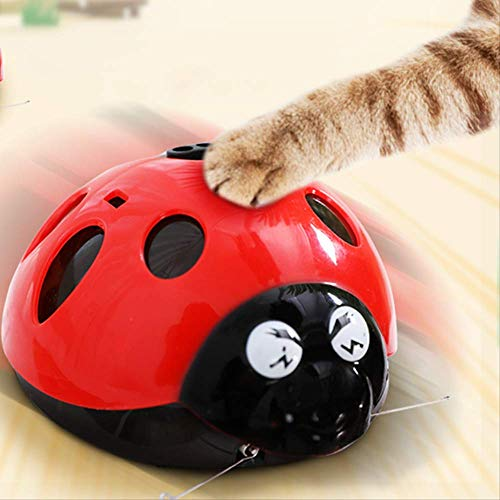 Atrápame Si Puedes Juguetes para Gatos Súper Divertidos, Juguetes para Mascotas con Pilas AAA