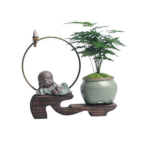 Espárragos Bonsai Planta En Maceta Reflujo Fragante Zen, Flores De Interior Y Plantas Verdes Escritorio Pequeño Mesa De Té De Oficina Bonsai