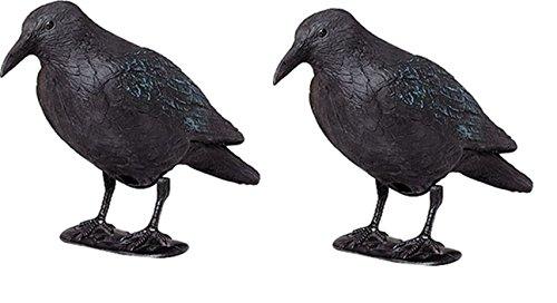 ARTECSIS 2 x Kunststoff-Rabe zur Taubenabwehr mit Stock und Füßen, Taubenschreck, Lockvogel für die Jagd
