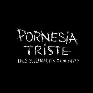 Pornesía Triste