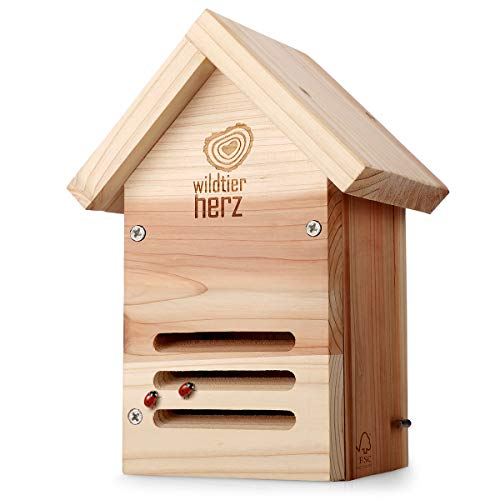 wildtier herz Ladybird House – Wooden Insect Hotel, Weatherproof, Made from Untreated FSC Wood, Nest Nesting Box, Ladybird House for Garden