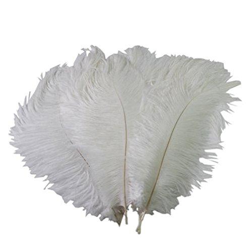 Toyvian 10 Stücke Künstliche Straußenfedern 12-14 Zoll Dekoration Federn Craft Plume für Hochzeit Urlaub Home Party (Weiß)