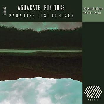 Paradise Lost Remixes