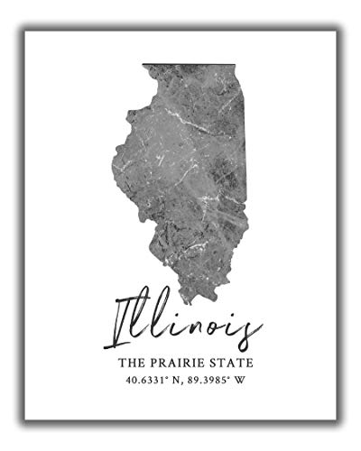 Illinois State Map Wall Art Print - 8x10 Silhouette Decor Print with Coordinates. Makes a Great IL-Themed Gift. Shades of Grey, Black & White.